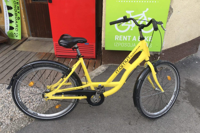 Rent a city bike in Slovenia