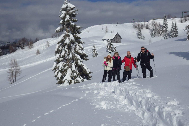 Snowshoeing in Vogel
