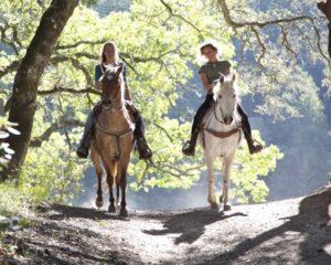 Jahanje na Bledu in Triglavskem Narodnem Parku