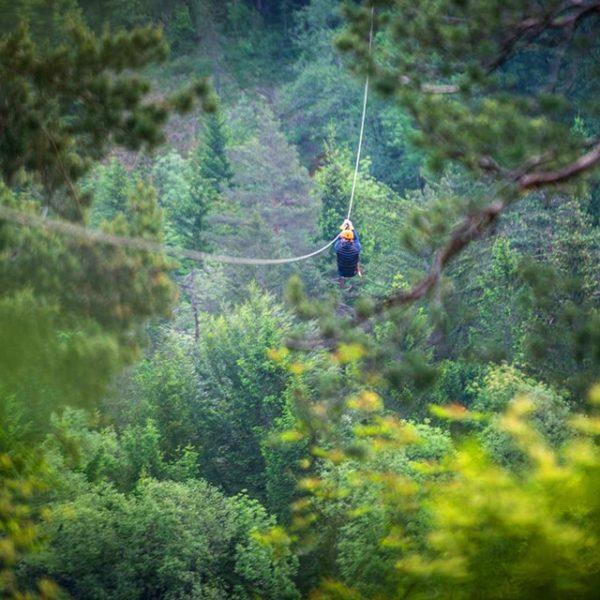 Najboljši zipline na Bledu